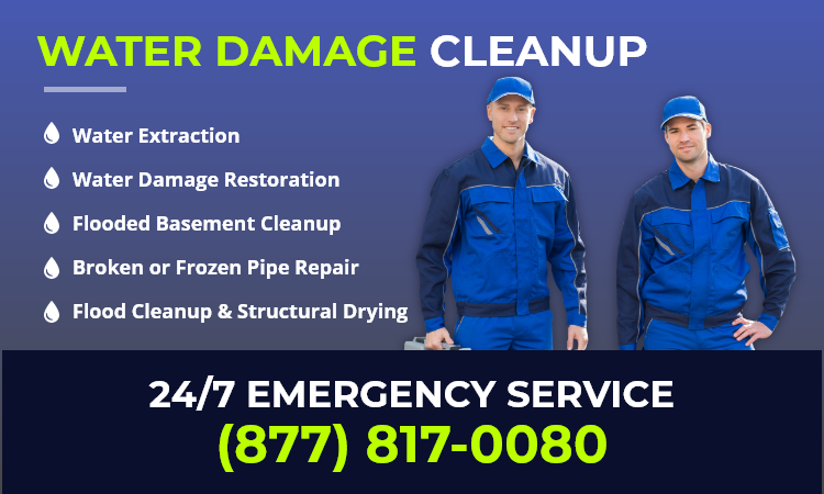 local water damage cleanup
